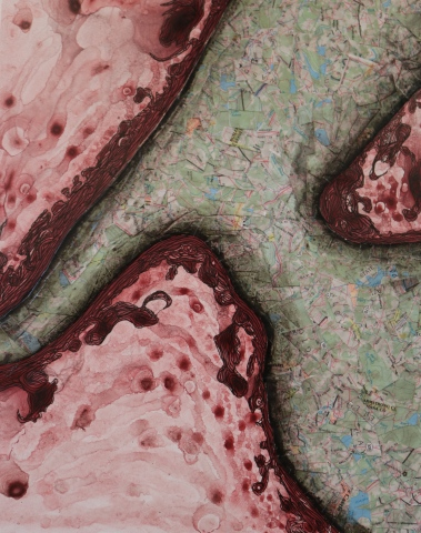 Topographic Study (Sold)