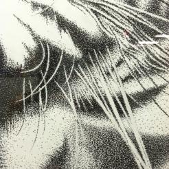 pointillism, amazing
